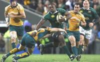 A gentle giant and a fan favourite: Tendai 'The Beast' Mtawarira (Photo: SA Rugby)