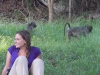 American Joselyn Mormile doing research on baboons is looking for Knysna residents to complete her survey.