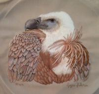 An embroidered masterpiece - a Eurasion Griffon Vulture by Renette Kumm.