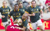 JP Pietersen carries the ball up for the Springboks against Wales, Mbombela Stadium, Nelspruit, 21 June 2014 (Photo: SA Rugby)