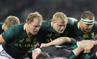 The Boks beat England by 31-28 at Twickenham in London on Saturday, 15 November. (Image: SARU)