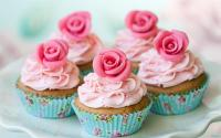 Cupcakes of Hope is a non-profit company and community-driven project that aims to to create awareness and raise funds for children with cancer, through the love of baking cupcakes. (Iimage: Knysna-Plett Herald)