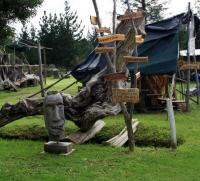 Knysna will be hosting the Working with Wood Festival from 9 � 11 October at the well-known Timber Village. A festival which allows all to experience Knysna�s rich timber heritage. (Photo: Fran Kirsten)