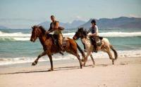 Horseriding in Gansbaai (Image: Gansbaai Tourism: Facebook)