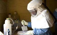 A laboratory worker examines samples to help diagnose suspected Ebola patients during an outbreak in the Congo in 2012 (Image: WHO)