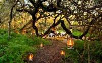 The Boma, under twisted milkwood trees, at Grootbos. (Image: Facebook/Grootbos)