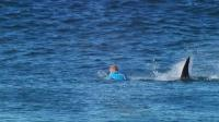 Mick Fanning was attacked by a shark during the JBay Open Finals. (Photo: WSL)