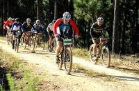 Online entries open 4 March for Momentum Weekend Argus Rotary Knysna Cycle Tour