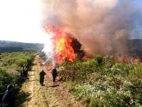 Controlled burning will continue for a couple of days on the east side of the mountain, in the region of the Garden Route Dam.