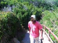 Sedgefield residents expressed their concern that this man was chopping down trees within the Sensitive Coastal Area of the Swartvlei Mouth.