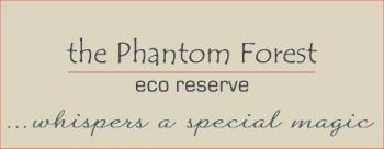 Phantom Forest Eco Reserve: Garden Route Eco Reserve