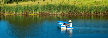 Toorbos Self Catering Cottages Wilderness: Accommodation Garden Route