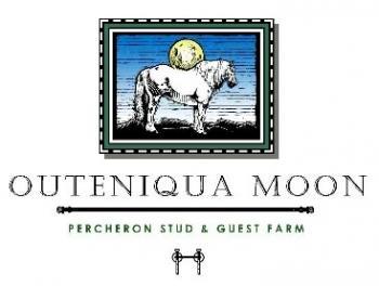 Outeniqua Moon Percheron Stud & Guest Farm: Outeniqua Moon Percheron Stud