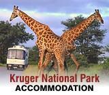 Destination Kruger Park