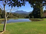 Clairewood: Clairewood Wilderness