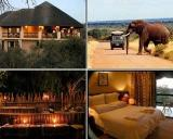 Bushwise Safari Lodge: Bushwise Safari Lodge