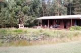 Treehouse Forest Lodge: Plettenberg Bay Accommodation
