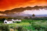 Drum Africa Safaris: Tailor-made tours in the Garden Route