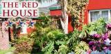 The Red House: George Garden Route Accommodation