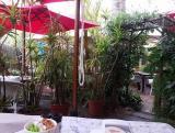 Travel Bugs Garden Restaurant: Restaurant George Garden Route