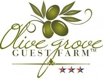 Olive Grove Guest Farm: Olive Grove Guest Farm