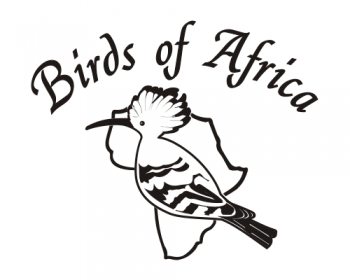Birds of Africa Knysna Shopping Arts & Crafts