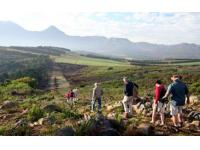 The Schapenberg Sir Lowry's Conservancy's conducts guided 'Biodiversity and Wine Walks' to raise funds for preserving identified biodiversity corridors within the conservancy (Photo: Walks for Wine)