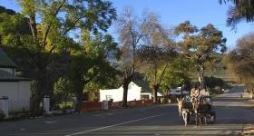 De Rust Donkey Awareness Program Garden Route Western Cape South Africa