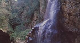 Waterfall George Garden Route South Africa