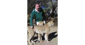 Cheetah Park in Oudtshoorn