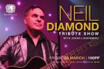 Neil Diamond Tribute Show with Johan Liebenberg