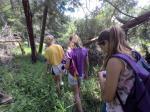 Junior Nature Watchers