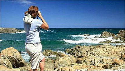 Oyster Catcher Trail Boggams Bay Mossel Bay
