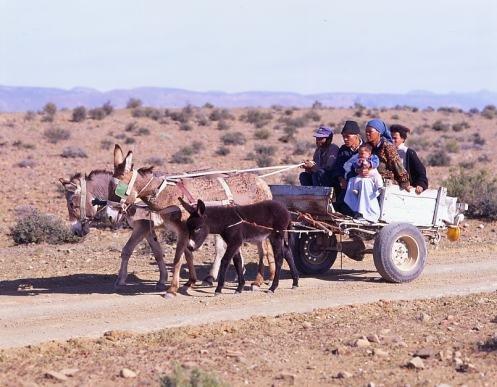 People of the Karoo region