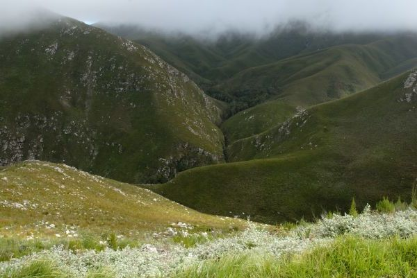 The Robinson Pass between Oudtshoorn and Mossel Bay Garden Route South Africa