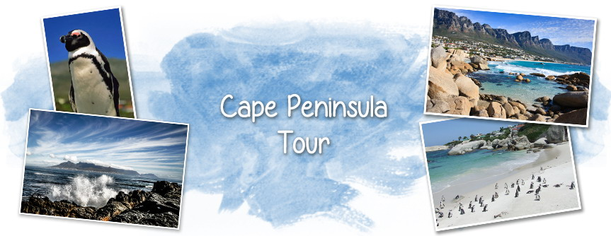 Fish Eagle Tours Plettenberg Bay