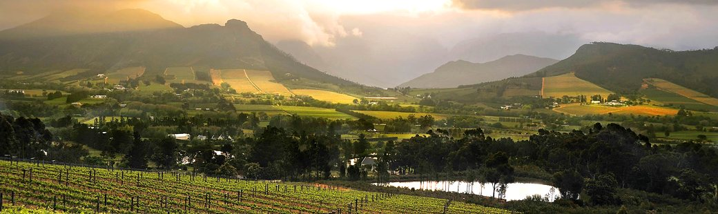 Visitors to the Western Cape are increasingly interested in exploring the wealth of eco-tourism activities on offer