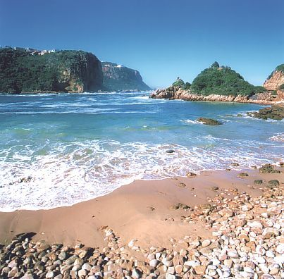 Knysna's famous Featherbed Reserve