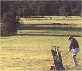 Golfing in Plettenberg Bay