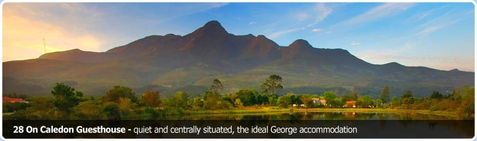 28 On Caledon Guesthouse - quiet and centrally situated, the ideal George accommodation