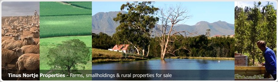 Holiday Accommodation in the South African Garden Route. Tourist guide to Garden Route South Africa